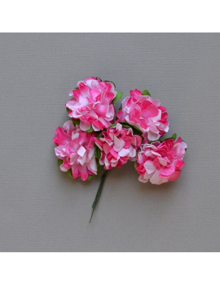 Lot de fleurs fushia/blanc