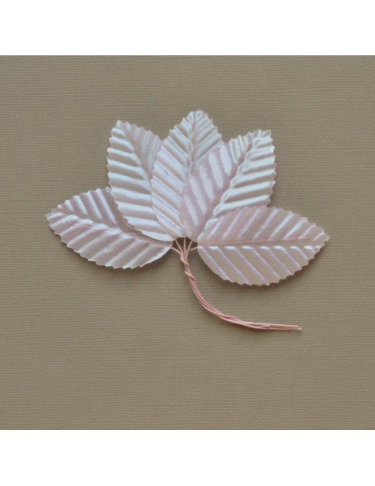 Lot de 5 feuilles rose
