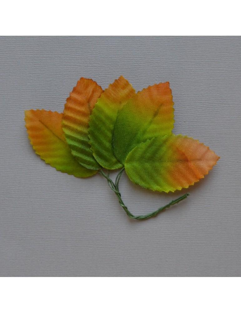 Lot de 5 feuilles marron et verte
