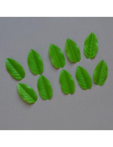 Lot de 10 feuilles verte