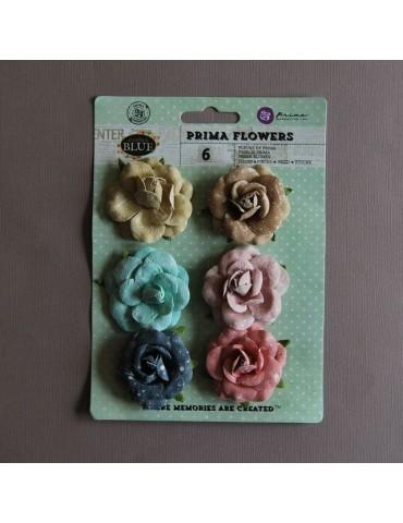 6 Fleurs PRIMA