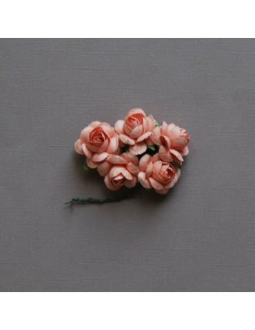 5 grosses roses saumon
