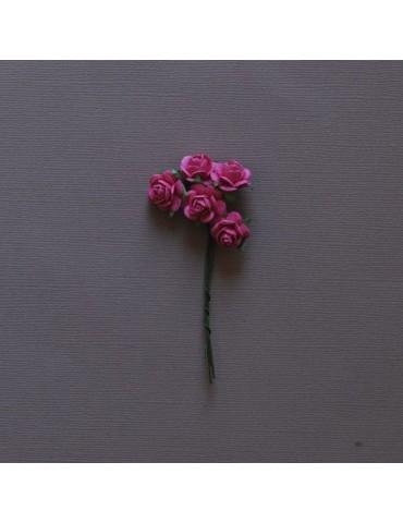 5 roses Fushia
