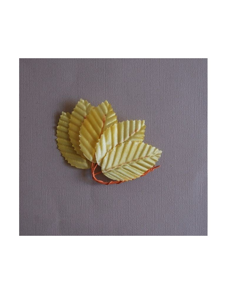 Lot de feuilles jaunes