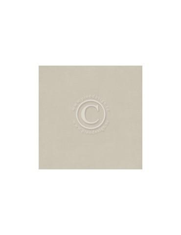 Papier Uni Pion Design Grey II