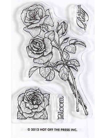 Tampon transparent Roses