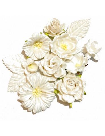 Lot de fleurs blanches...