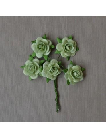 Bouquet de 5 roses vertes